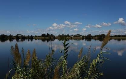 La Nuova Zelanda pulirà i suoi corsi d'acqua