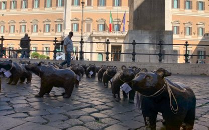 Wwf invade piazza Montecitorio con 50 orsi marsicani. FOTO