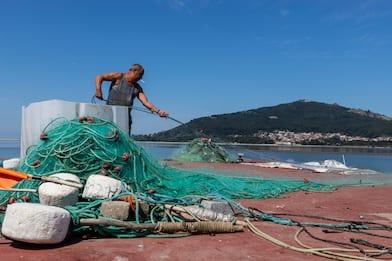 Le attrezzature da pesca sono una minaccia per la salute degli oceani