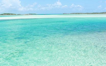 Atolli corallini: così resistono all'innalzamento del livello del mare