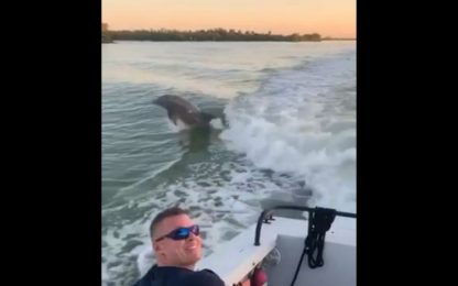 Florida, delfini inseguono la barca dei pompieri. VIDEO