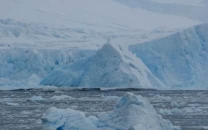 Antartide e Groenlandia, accelera lo scioglimento dei ghiacci