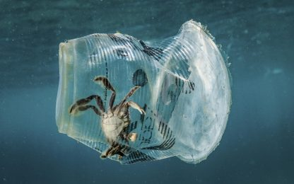 Livello oceani si sta innalzando, nel Tirreno record di microplastiche
