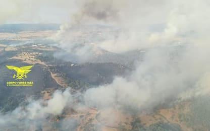 Incendi: due Canadair in Sardegna