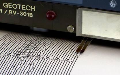 Terremoto di magnitudo 3.8 tra Reggio Calabria e Vibo Valentia