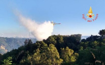 Incendi in Calabria, 45 roghi da stamani