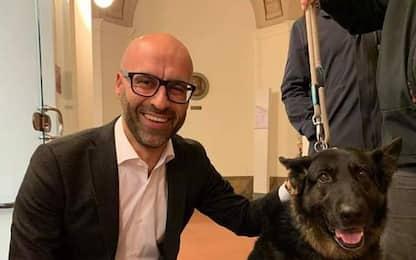 Rimborso spese veterinari per cani-gatti 'adottati'