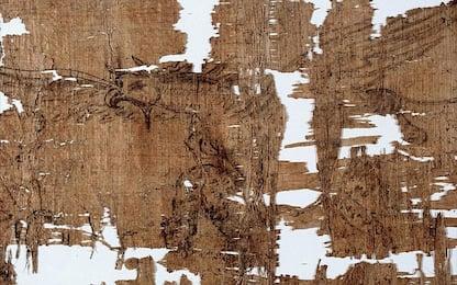 Torino, Papiro Artemidoro è falso ma la truffa è prescritta