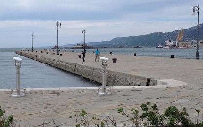 Ferragosto 2019 a Trieste, fuochi d'artificio silenziosi per i cani