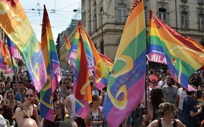 """""""Ho molti amici&nbsp;gay"""": gli attacchi omofobi della politica italiana<br>"""