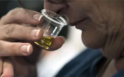 Olio di Puglia, ottenuto il marchio IGP dalla Commissione Ue