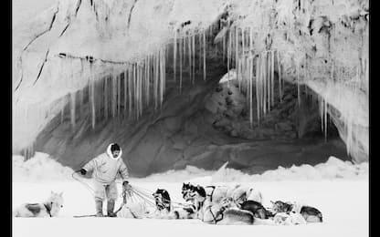 Artico. Ultima frontiera in mostra