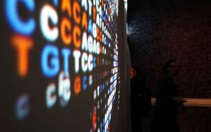 Autismo, l'Intelligenza Artificiale scopre nuove mutazioni genetiche