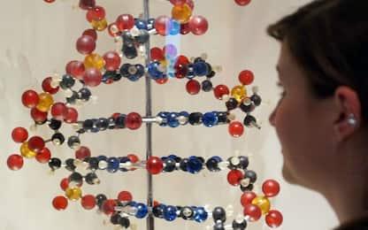 Schizofrenia, trovata impronta genetica: oltre 100 geni a rischio