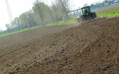 Roma, ritrovato un ordigno bellico in un terreno agricolo a Nettuno