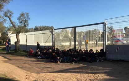 Tap: riparte la protesta, bloccato espianto ulivi