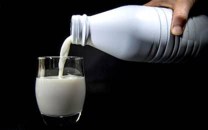 Cinque cose che forse non sapevi su latte e latticini