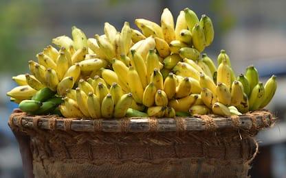 Ecuador, eruzione Sangay: distrutte intere piantagioni di banane