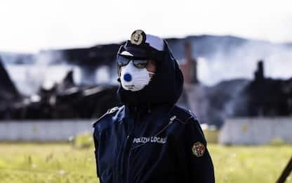 Rogo Pomezia, ancora fiamme. Stop raccolta ortaggi e pascoli nell'area