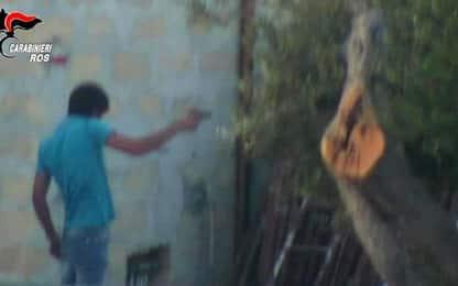 Mafia, colpita la rete di fiancheggiatori di Messina Denaro: 14 fermi
