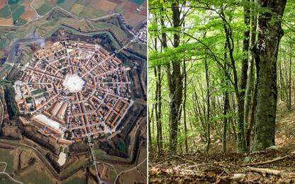 Unesco, faggete e Opere di difesa veneziane sono patrimonio Umanità
