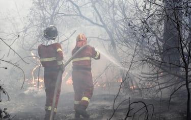 castelfusano_pompieri_ansa