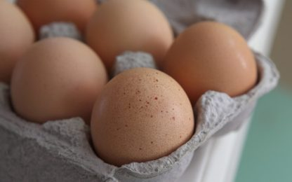 Sequestrate 26mila uova: mancano informazioni sulla tracciabilità