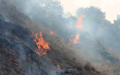 Incendi, nel 2017 a fuoco un'area vasta quanto Roma