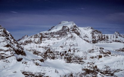 Scoperte tre falene sulle Alpi, si chiamano come leggendari alpinisti