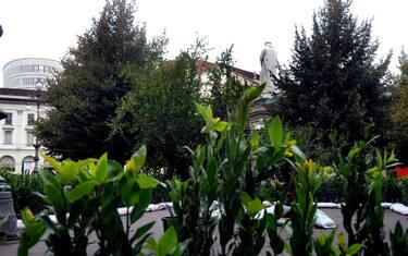 Fotogramma_Allestimenti_piante_Piazza_Scala_6