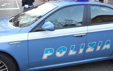 Ansa_polizia
