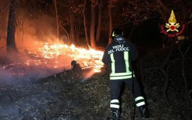incendi_lombardia_vf_ansa