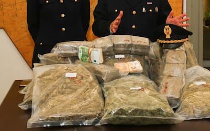Blitz a Bronte, sgominata banda di spacciatori di marijuana