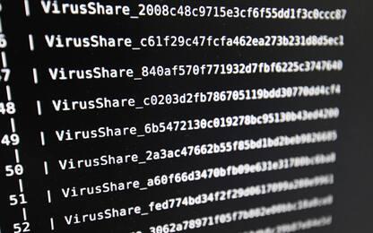 """Cybercrimine, polizia e Fbi contro hacker della """"Rete Andromeda"""""""