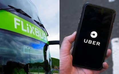 Elezioni 2018, da Flixbus e Uber offerte per recarsi gratis al seggio