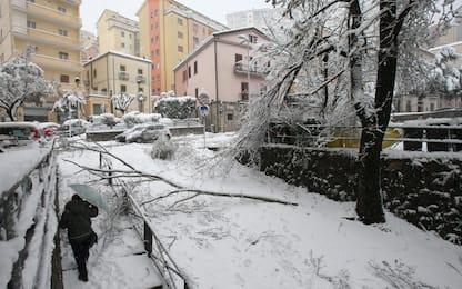 Maltempo, neve a Potenza