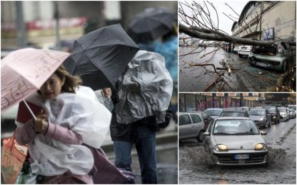 Maltempo, alberi caduti a Roma. FOTO