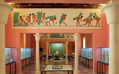 Il Museo del Papiro di Siracusa vende alcuni pezzi per autofinanziarsi