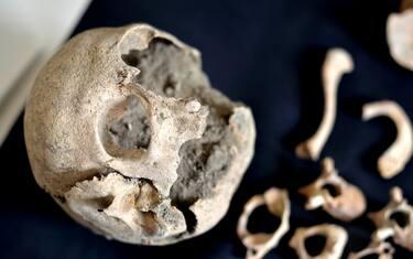 lapresse-scheletro-pompei