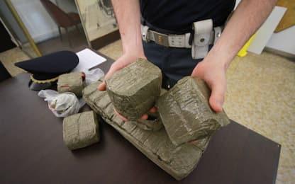 """Le vie della coca"", Sky TG24 Inside dedicato al narcotraffico"