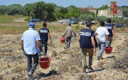 Caporalato, maxi operazione polizia su 82 aziende italiane: 3 arresti