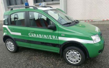 Sequestrato un impianto di rifiuti in provincia di Novara