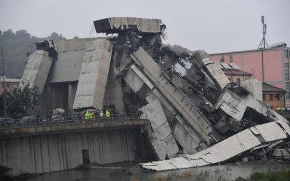 Crollo Genova, Toninelli: chi ha sbagliato pagherà. Polemica su M5s