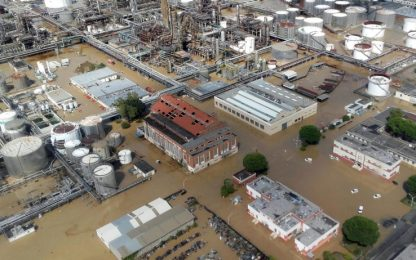 """Livorno come L'Aquila, gli imprenditori: """"Brinderemo all'alluvione"""""""