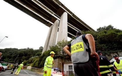 Novara, furgone si ribalta sulla A26 e un toro scappa: ripreso