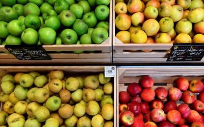 Mele Ogm, esistono ancora le mele tradizionali?