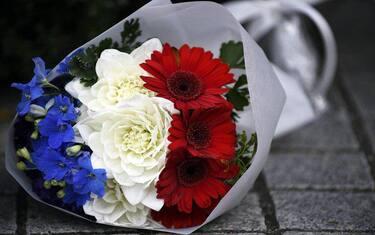 fiori_ansa