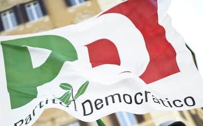 Primarie del Pd, come votare: data e regolamento