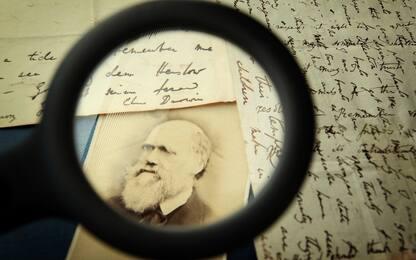 Charles Darwin, chi era il padre della teoria dell'evoluzione
