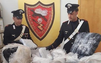 Droga e immigrazione clandestina tra Albania, Italia e Gb: 13 arresti
